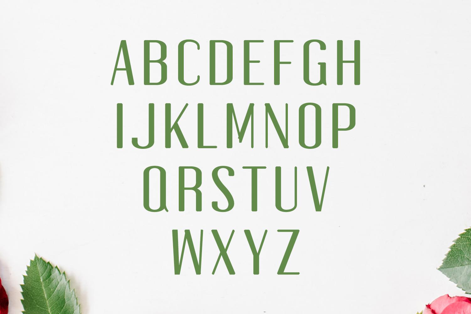 Jadrien Serif + Sans Duo 5 Font Pack example image 4