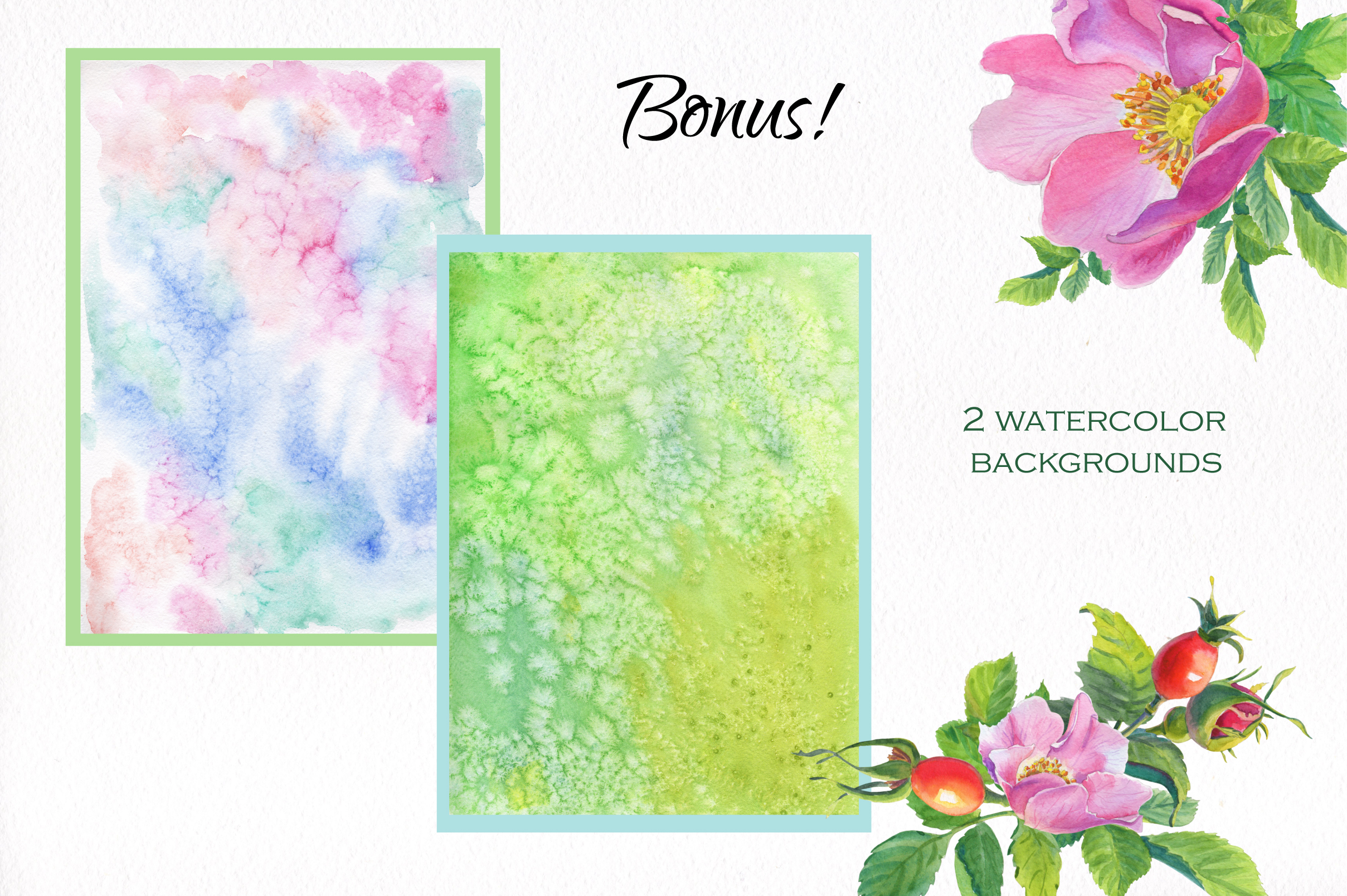 Aroma of Wild Roses. Watercolor set. example image 8