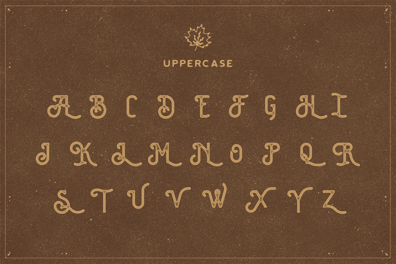 The Brewski - Textured Typeface example image 5