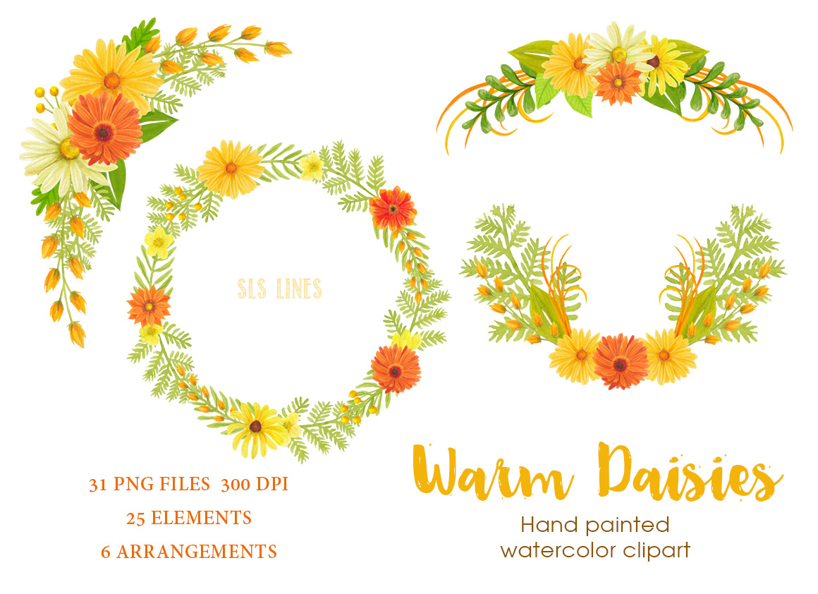 Warm Yellow & Orange Daisies, Watercolor PNG example image 3