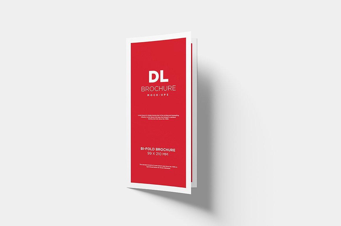 DL Bi-fold Brochure Mock-Up example image 8