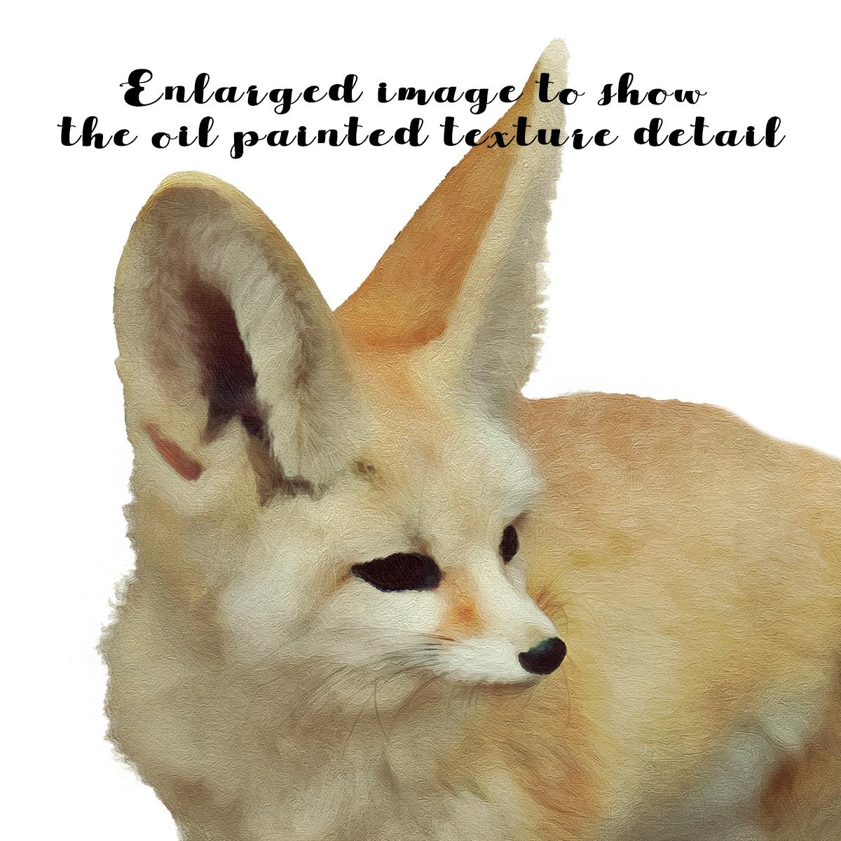 Woodland Animal Set V1 example image 6