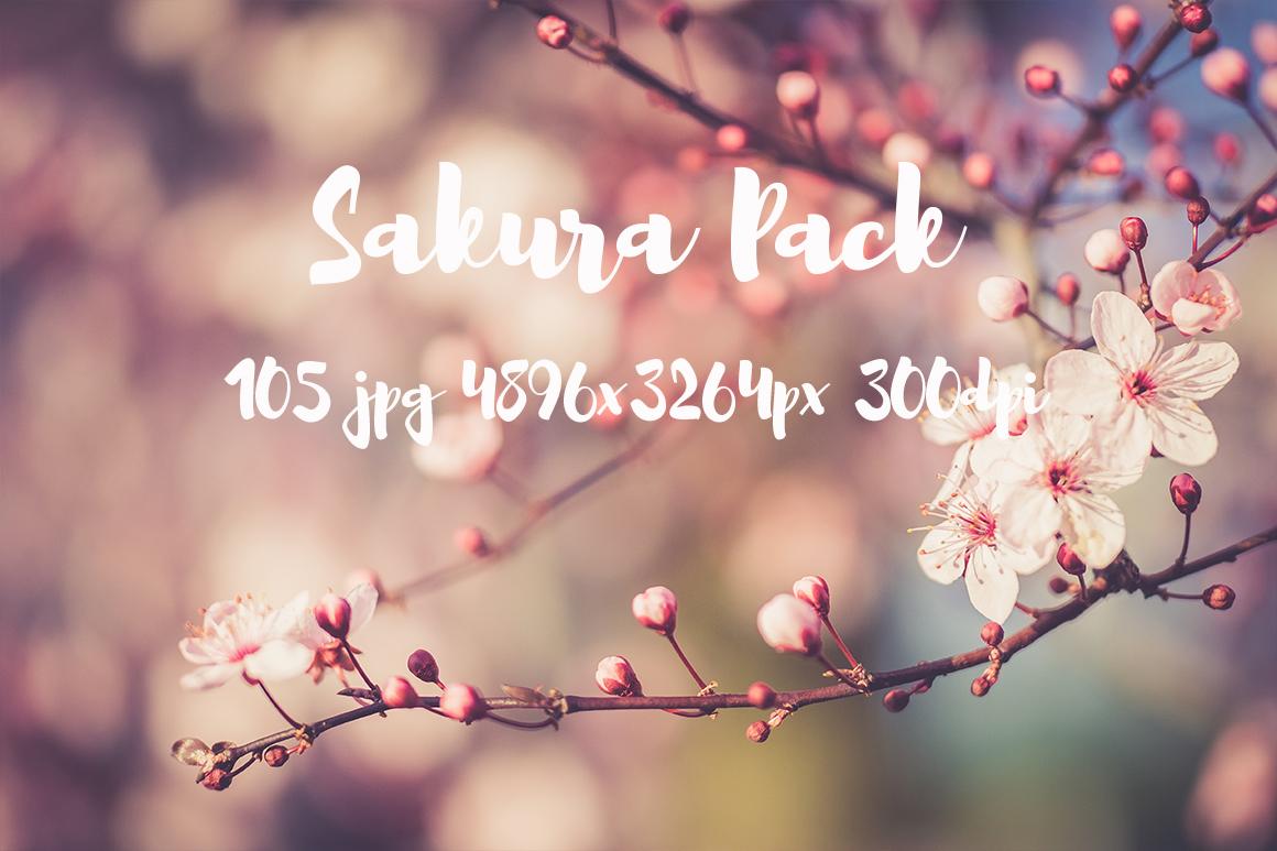 sakura photo pack example image 7