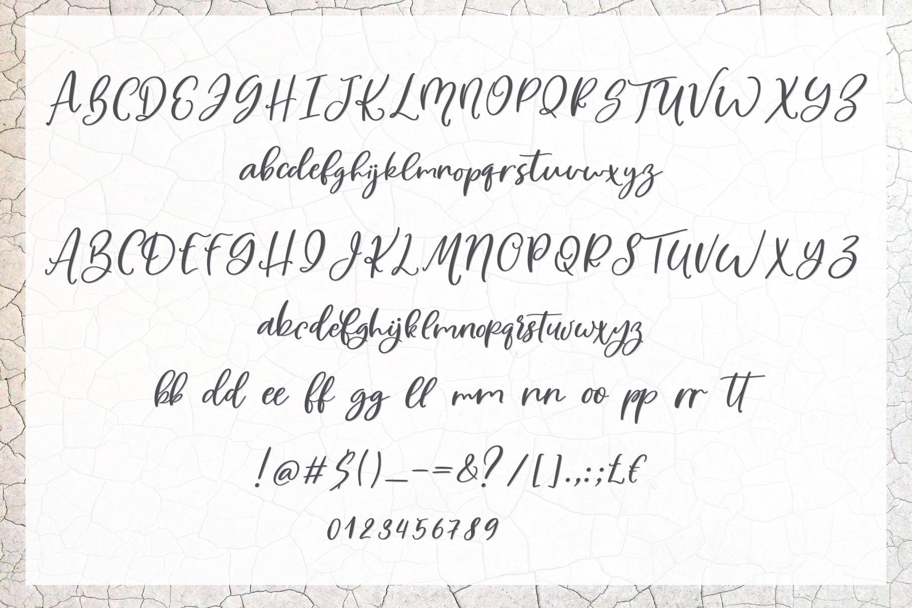 Bonefish Font Trio example image 8