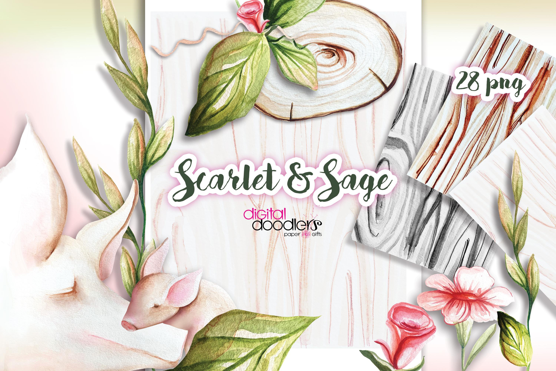 Scarlet & Sage example image 2