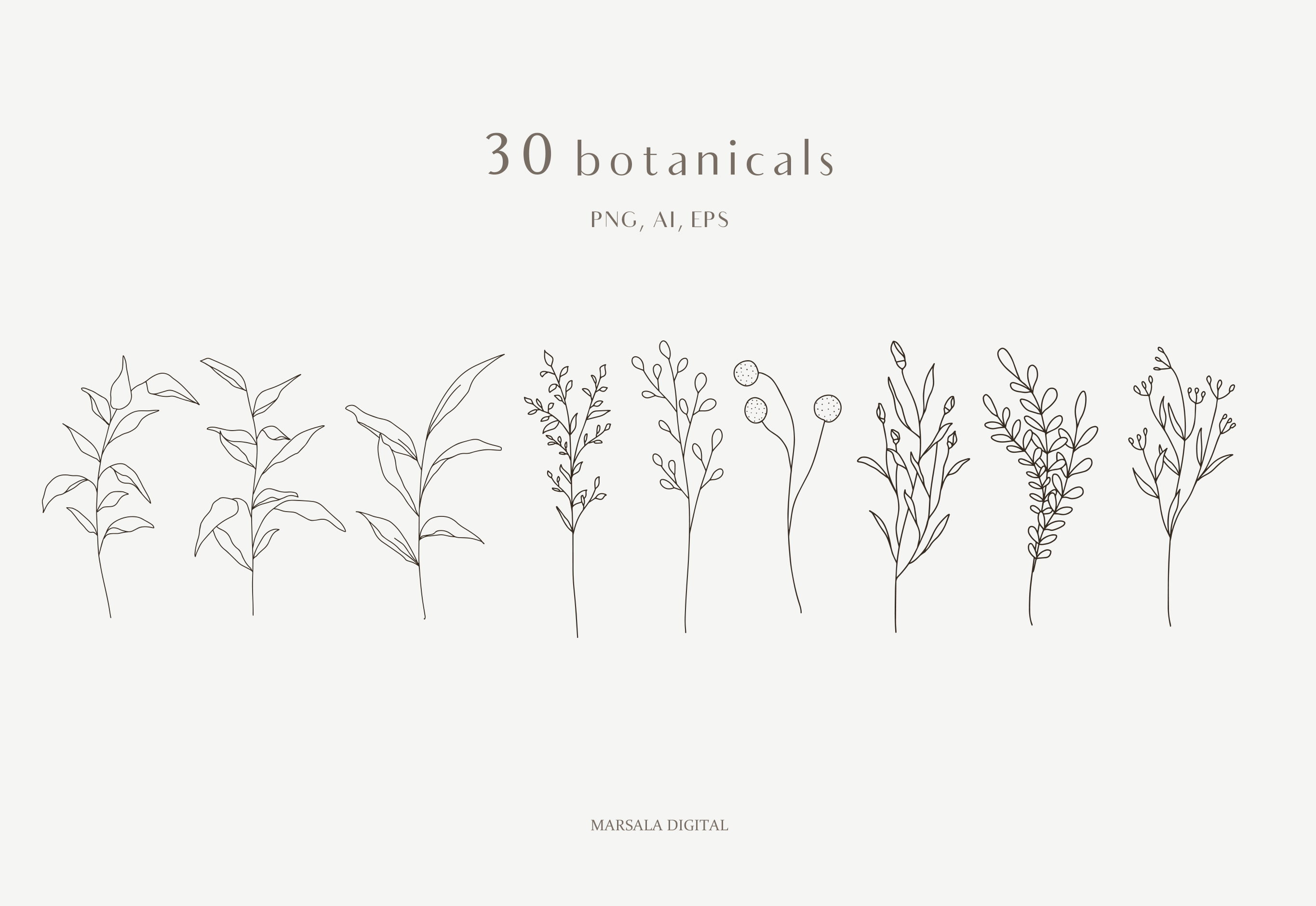 Botanical Line Art, Wildflowers Clipart, Leaves Clipart example image 4