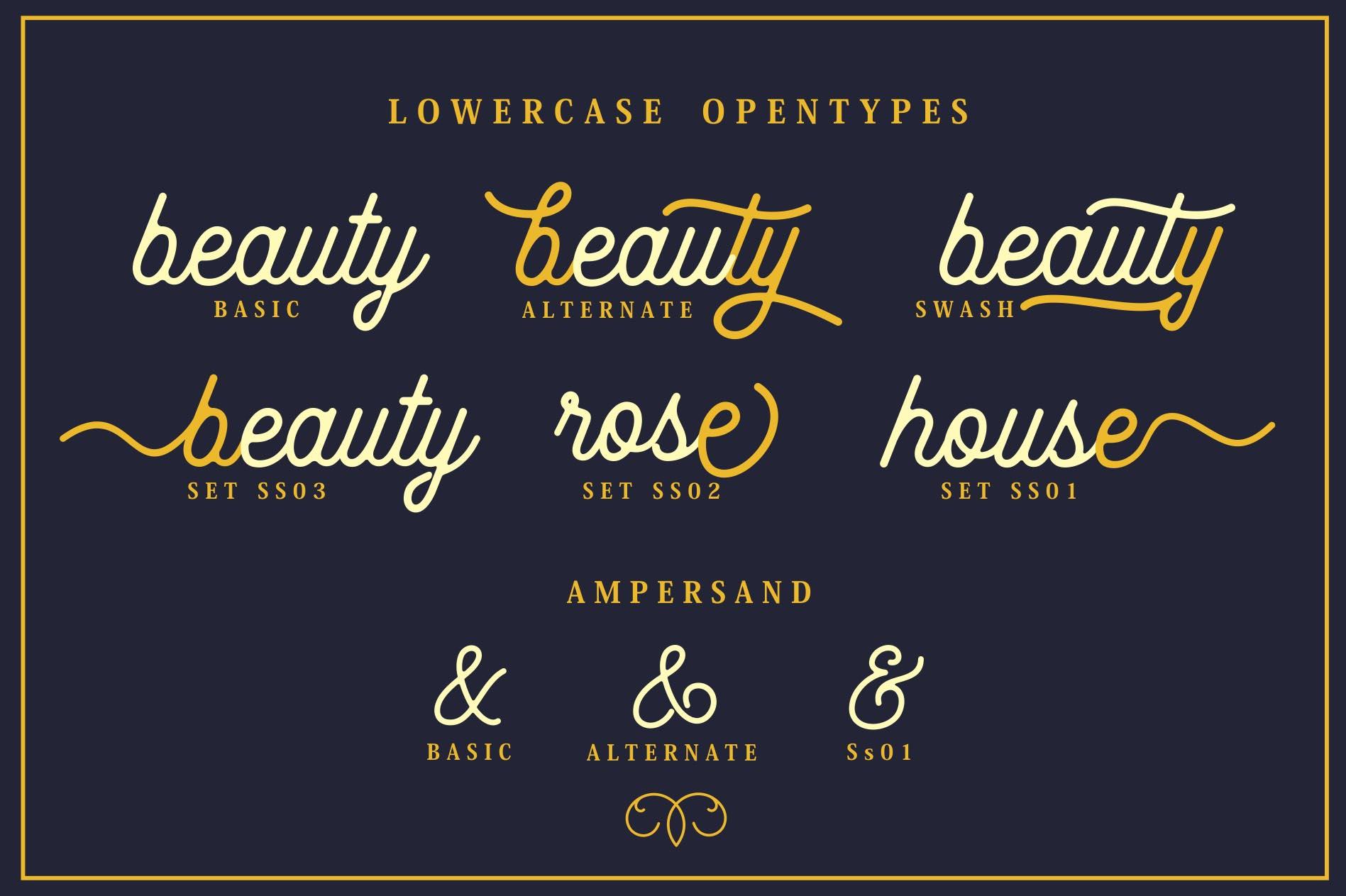 Beauty Script & Ornaments example image 3