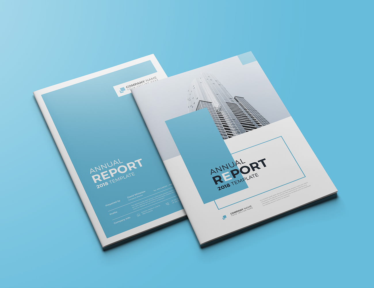 The Blue Annual Report example image 2