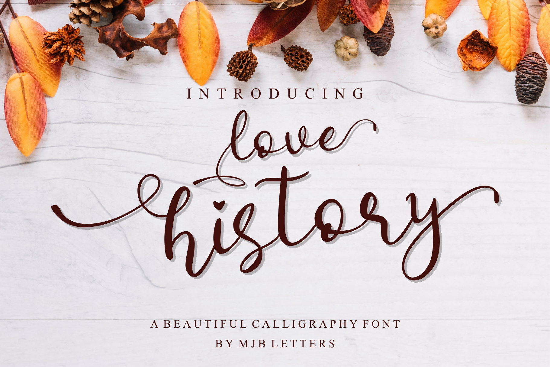 Special Font Bundles example image 10