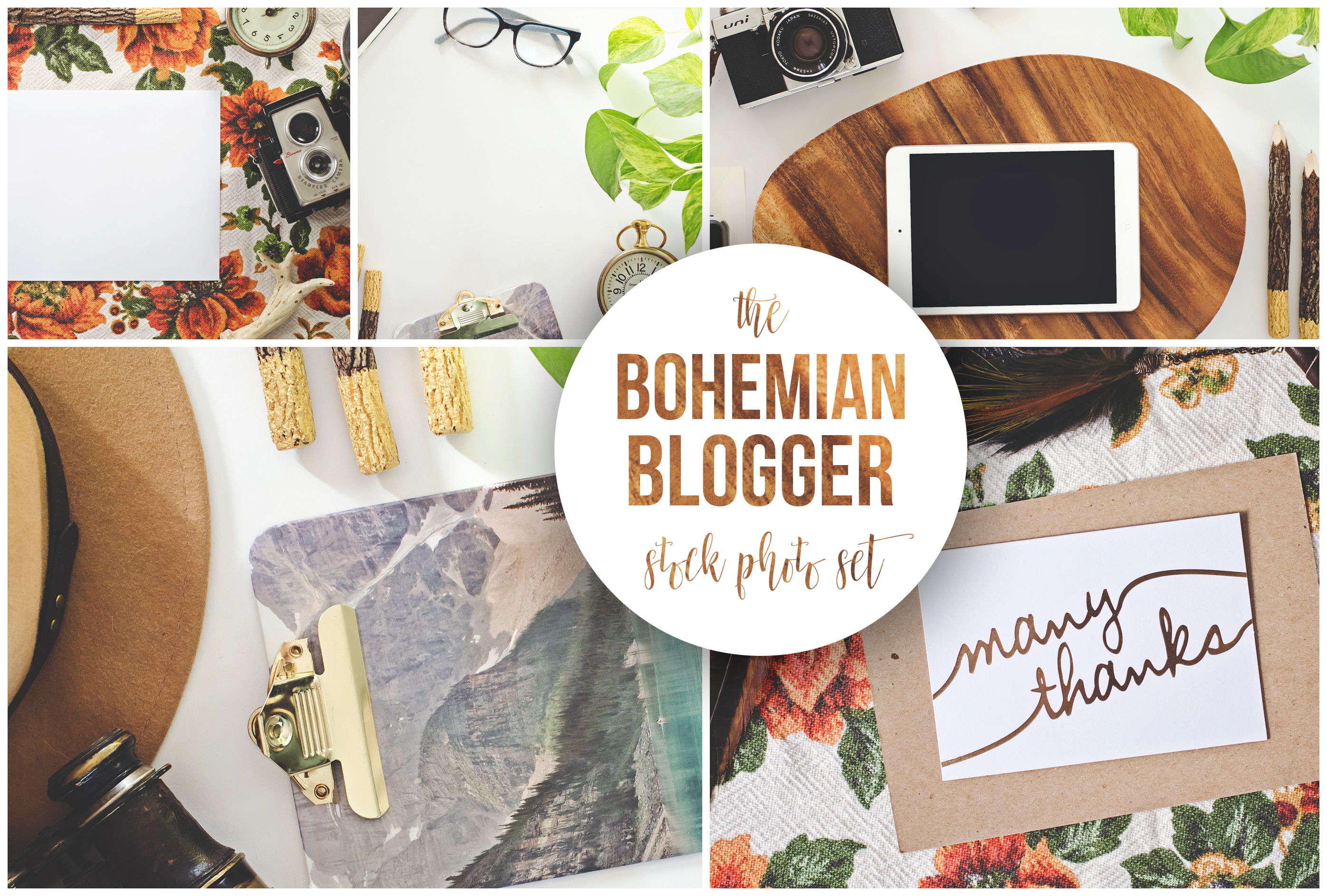 The Bohemian Blogger Stock Photography example image 6
