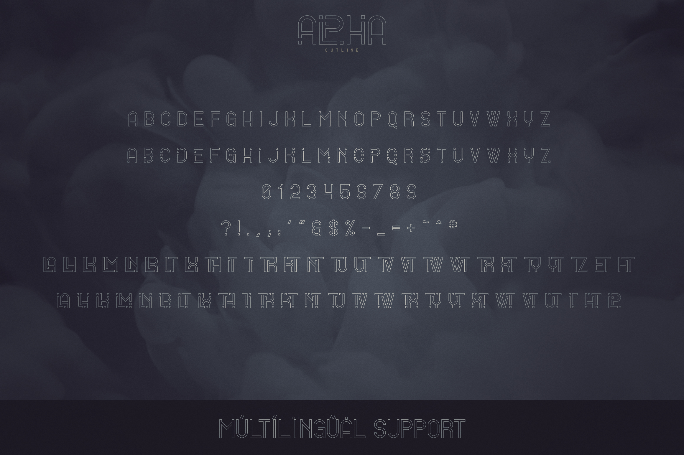 Alpha Display Font - 4 styles example image 10