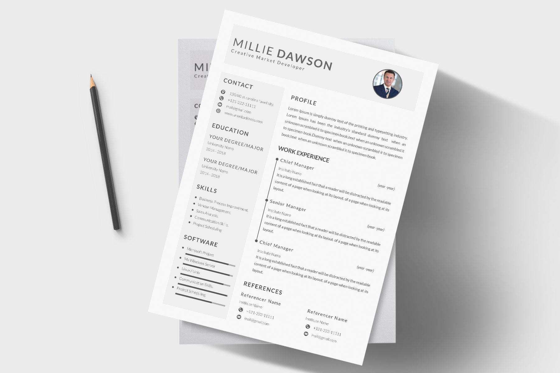 Professional Cv Resume Bonus business card Word/PSD,AI example image 7