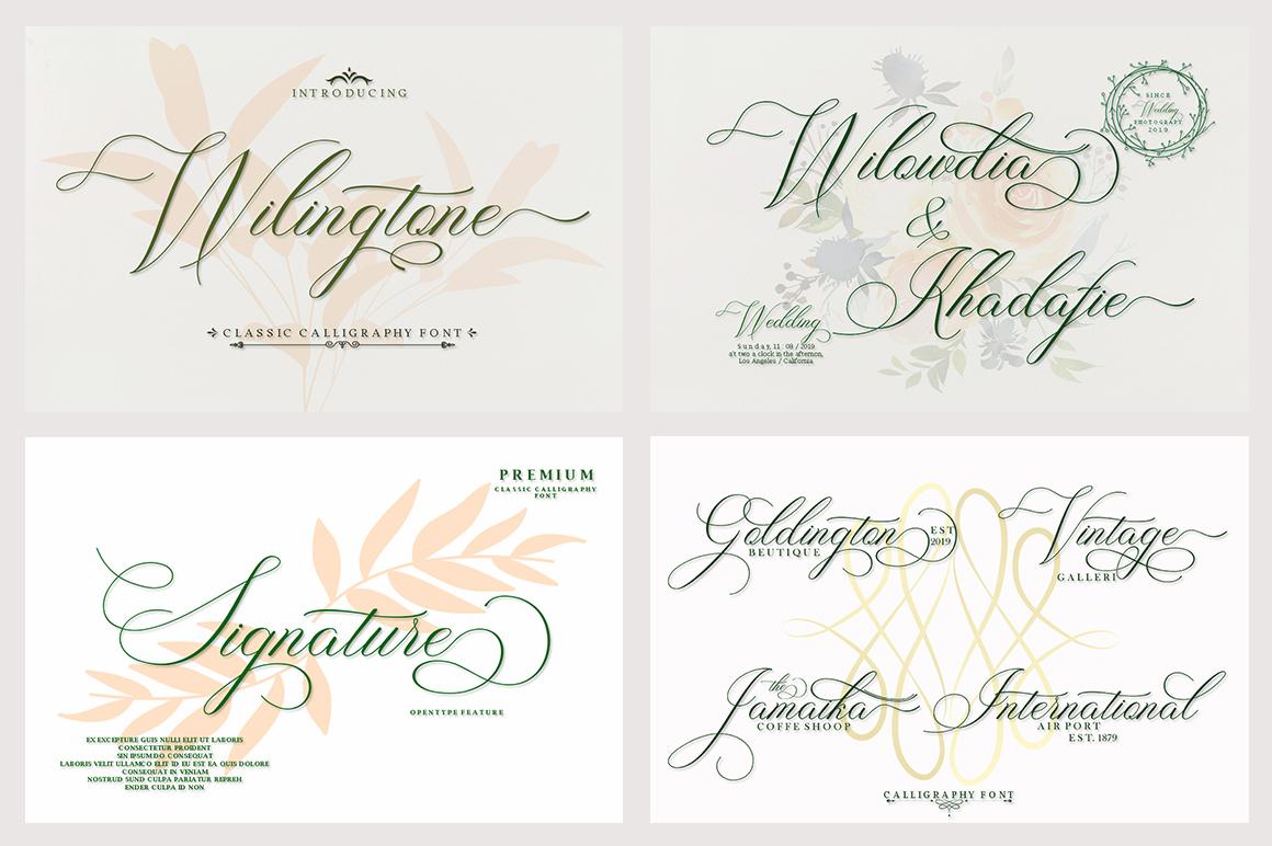 Fantastic Beautiful Bundle 10 Collection Font example image 2