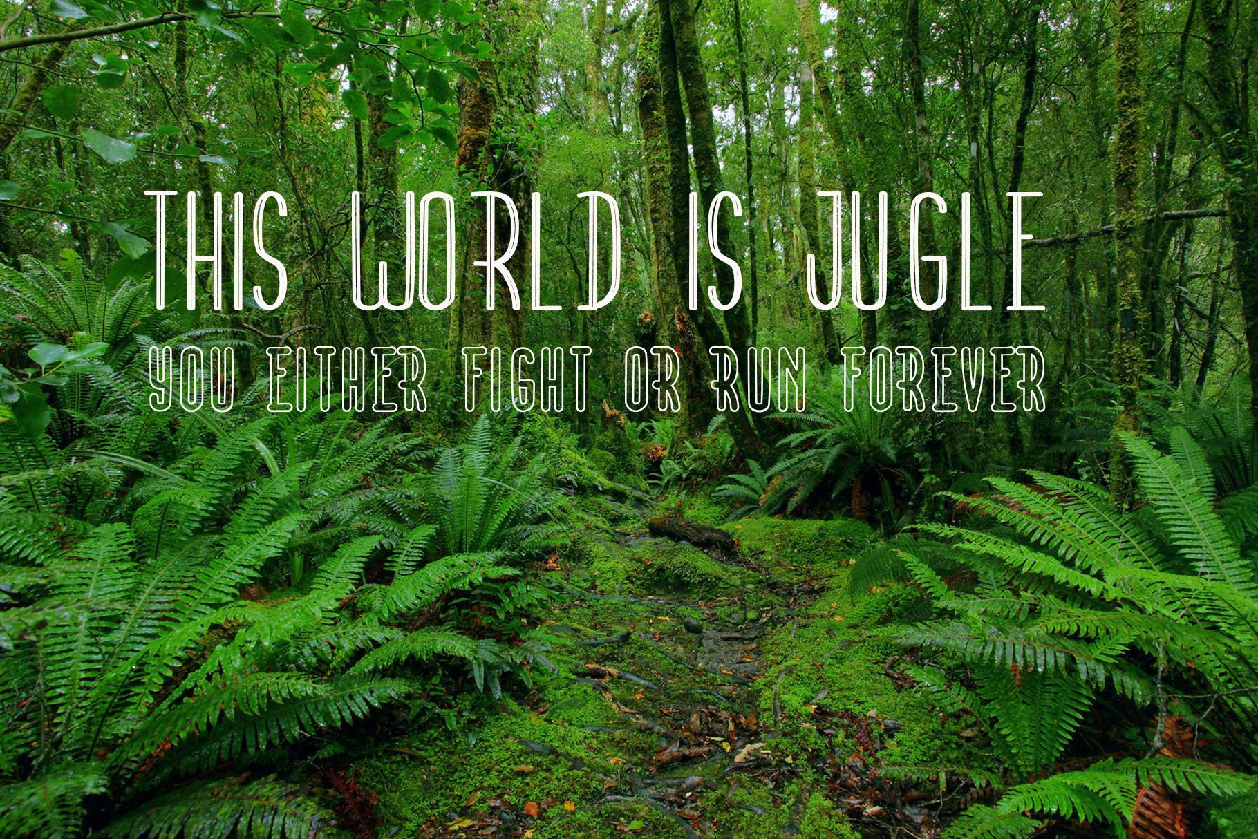 Eyes Jugle Family Font example image 2