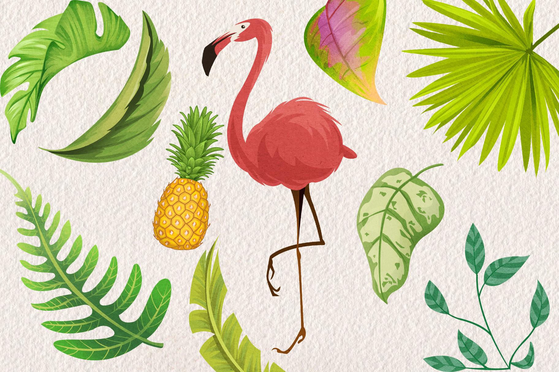 Tropical Floral Plants & Frames Set example image 4