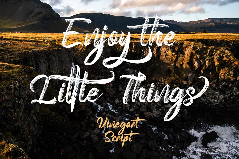 Vinegart - Handwritten Font example image 4