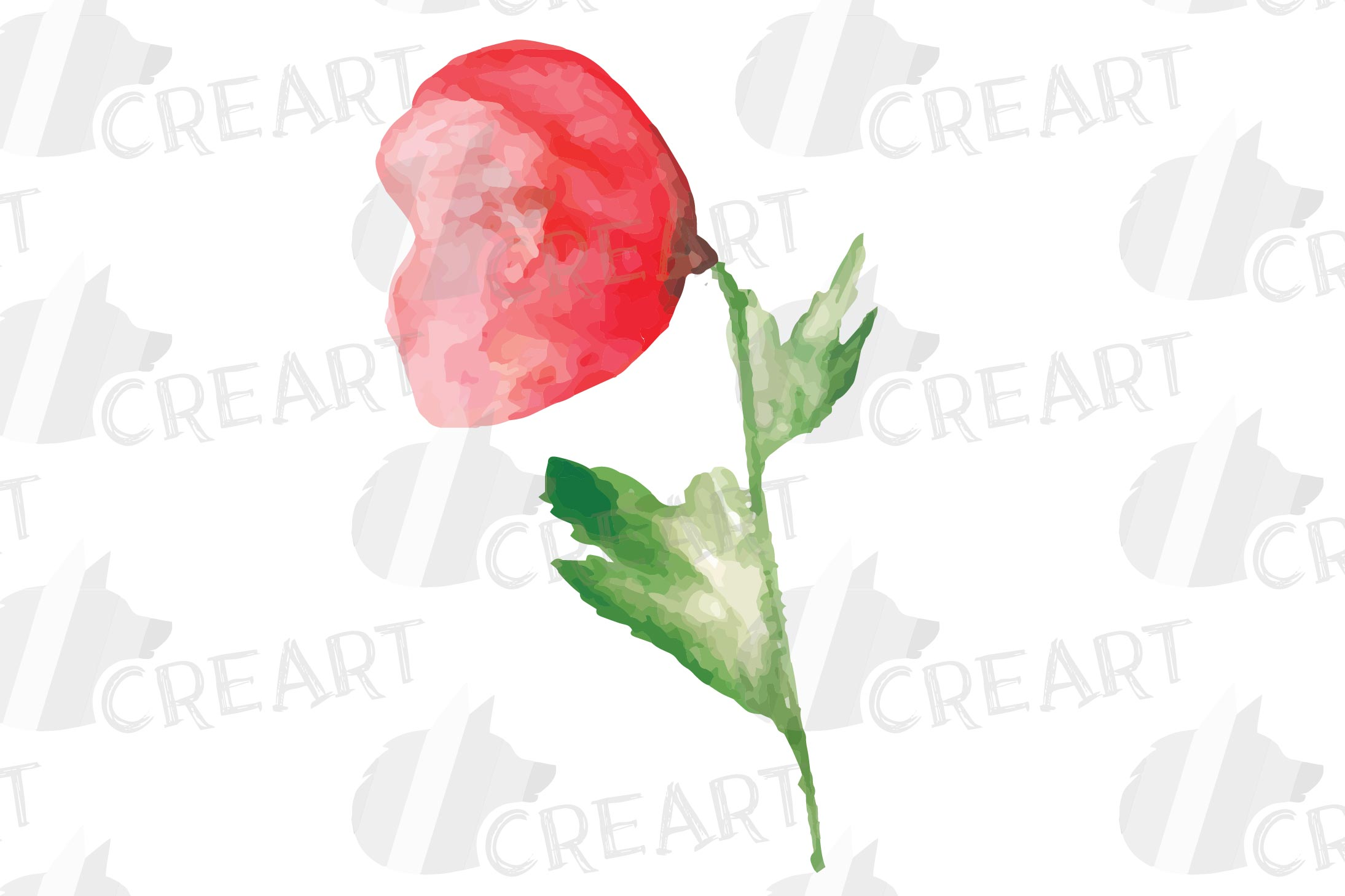 Watercolor red poppy flower and leaf decor clip art. Poppies example image 10
