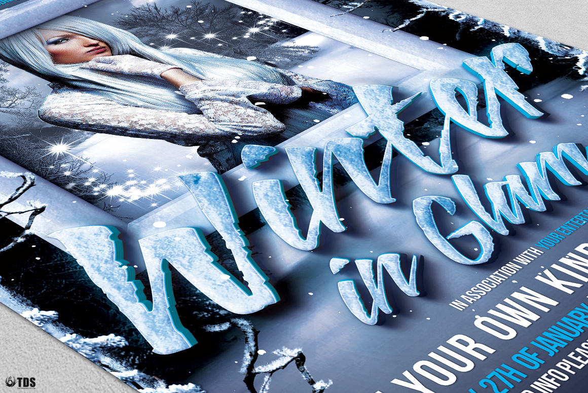 Winter Glam Flyer Template V1 example image 6
