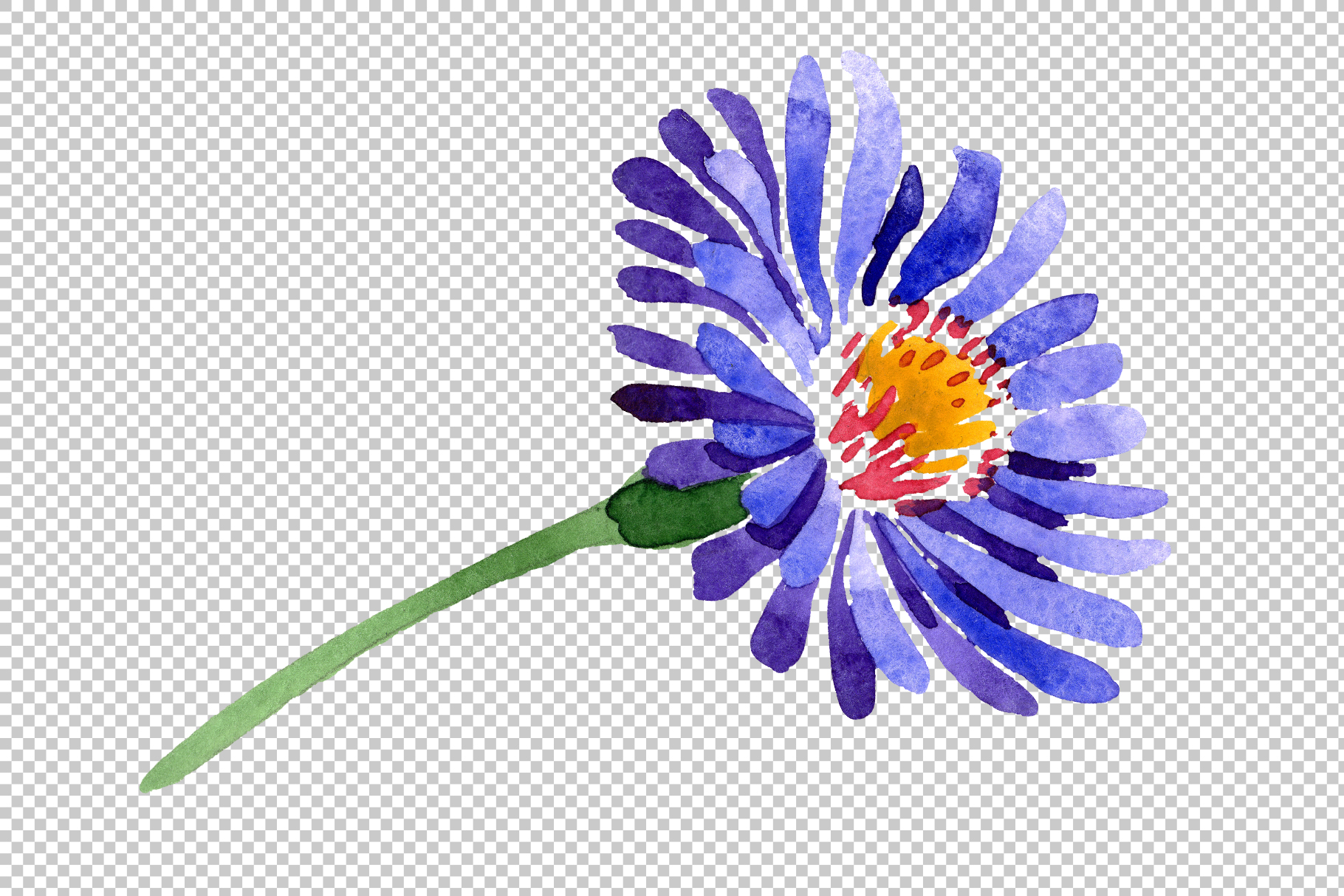 Asters Watercolor png example image 7