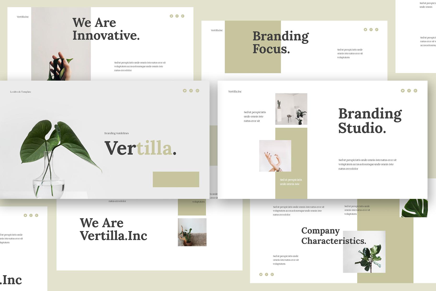 Vertilla-Brand Guideline Keynote example image 1
