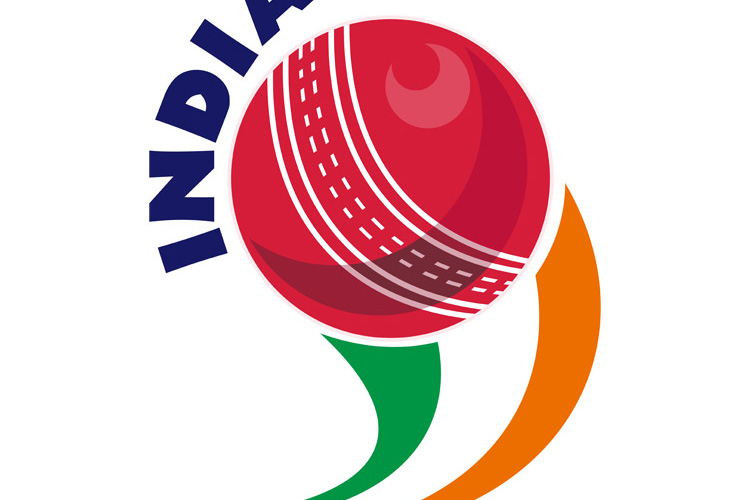 cricket ball flying out India example image 1