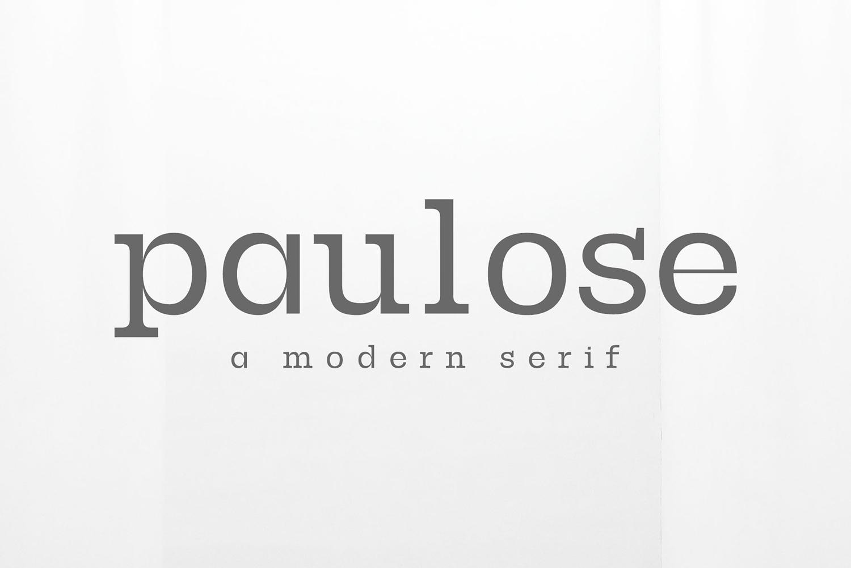Paulose Modern Serif Font Family example image 7