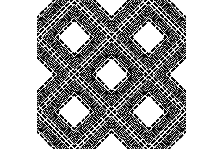 Zebra stripes. Ethnic boho ornament. 10 seamless patterns. example image 4