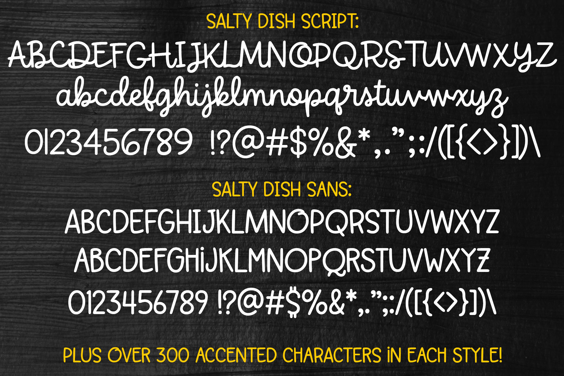 Salty Dish - script and sans font duo! example image 2