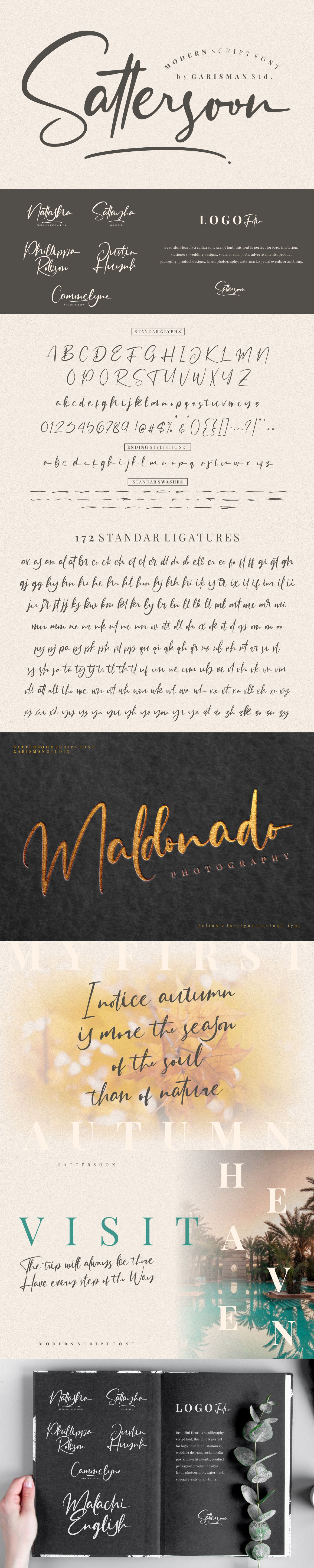 Sattersoon - Modern Script Font example image 11
