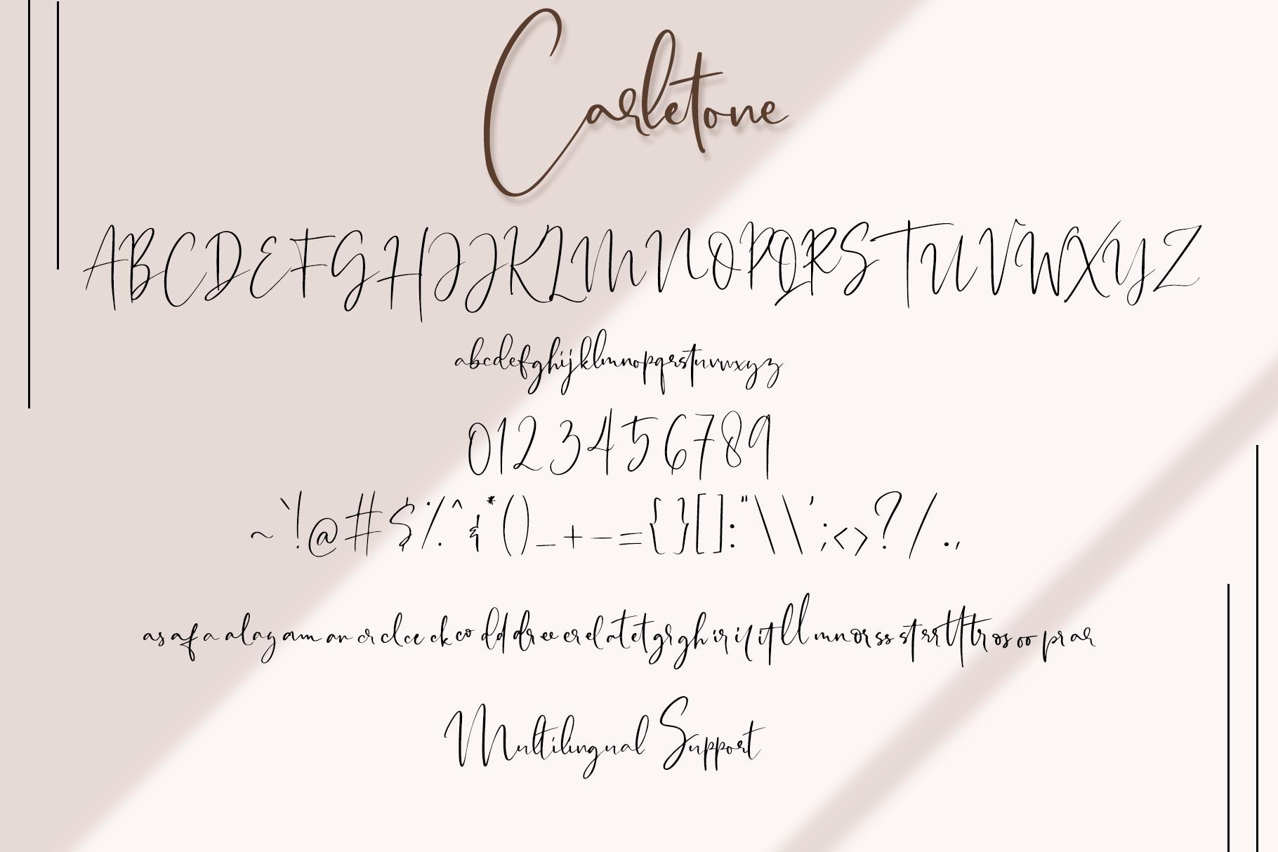 Carletone - Classy Signature example image 7