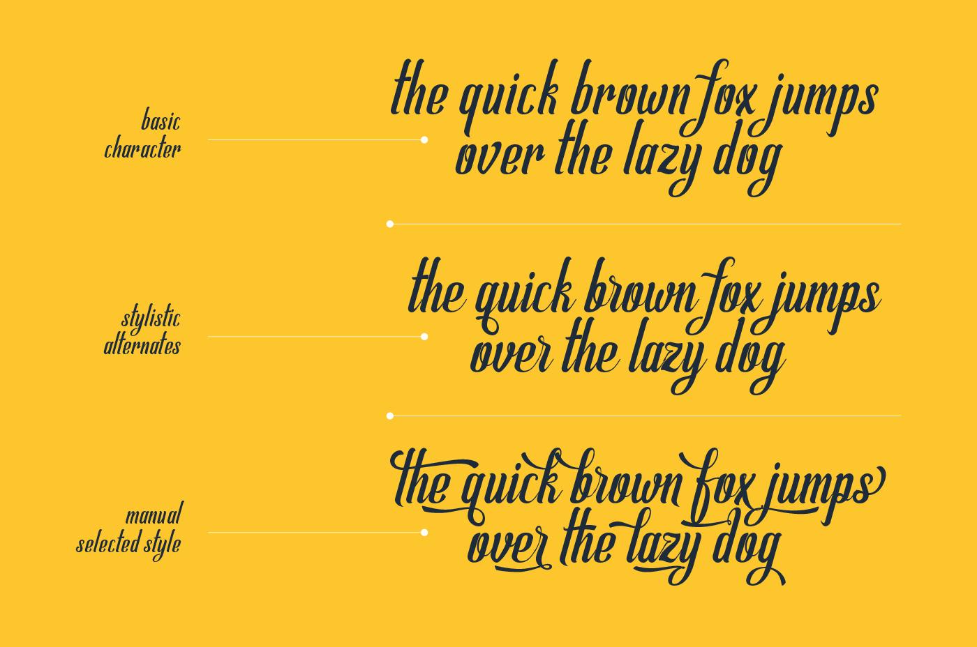 Allema Script Font example image 4