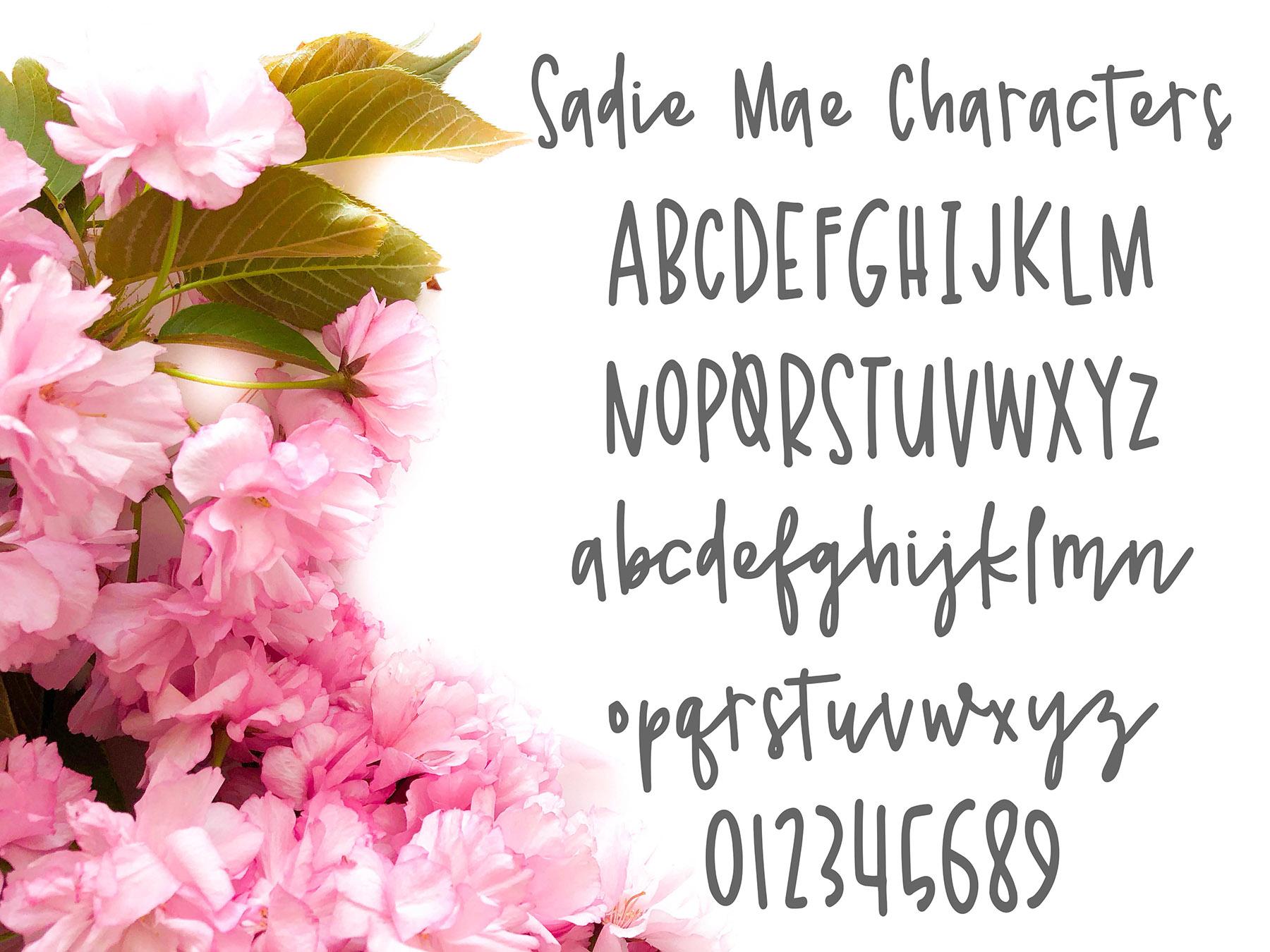 Sadie Mae example image 4