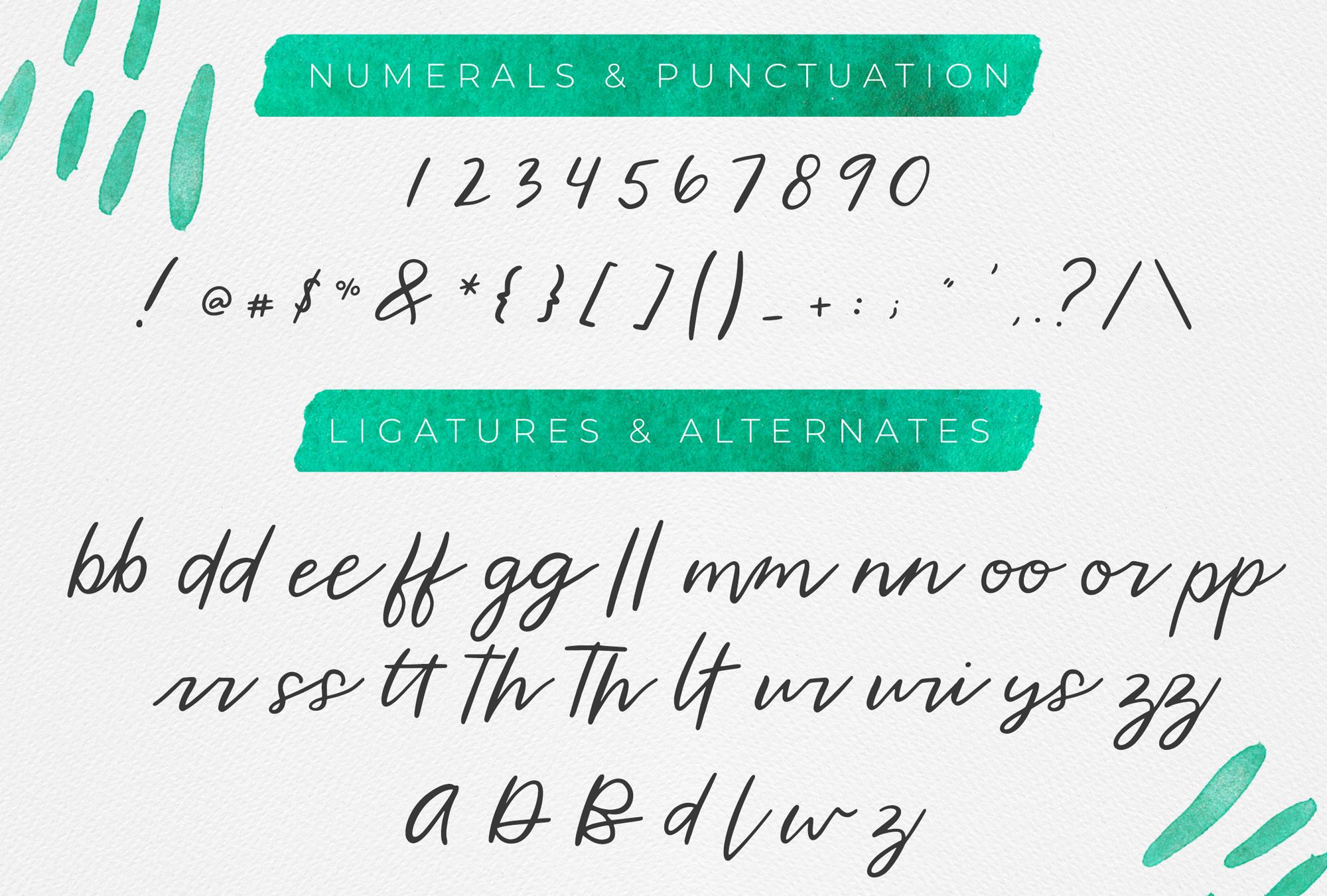 Wild Indigo Script Font example image 3