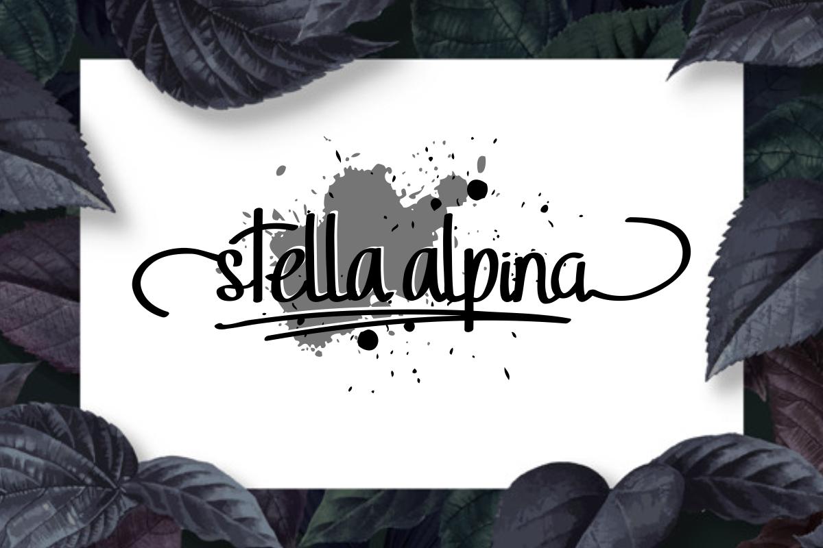 StellaAlpina example image 2