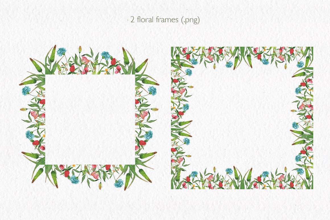 Summer florals. Watercolor floral collection. example image 3