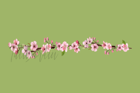 17 Watercolor Cherry Blossom ClipArt example image 3