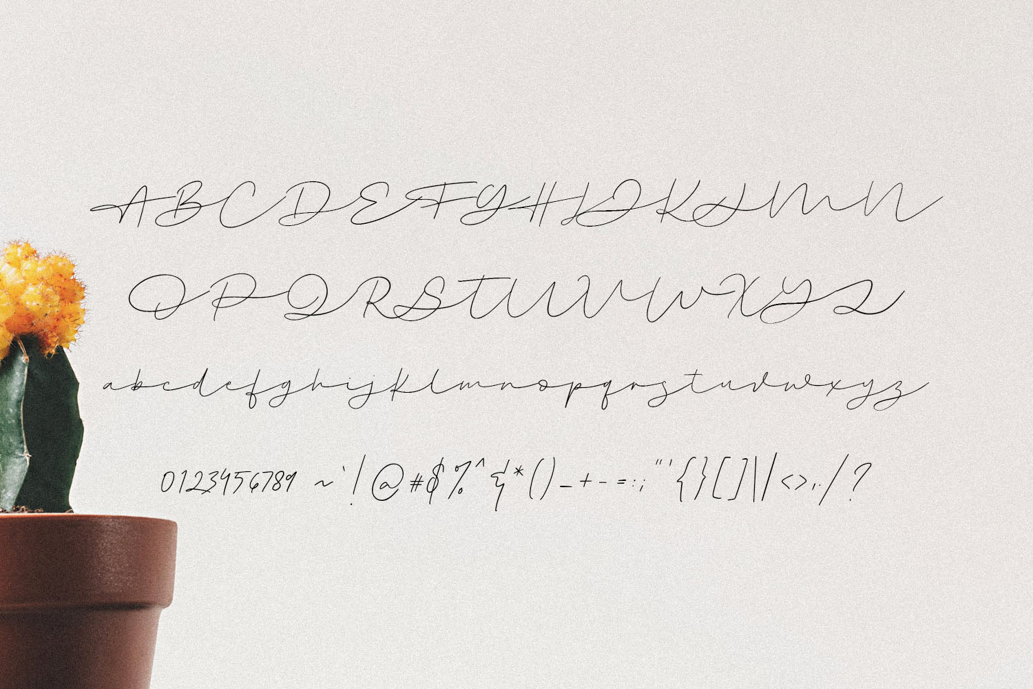 Swootys Script Font example image 10