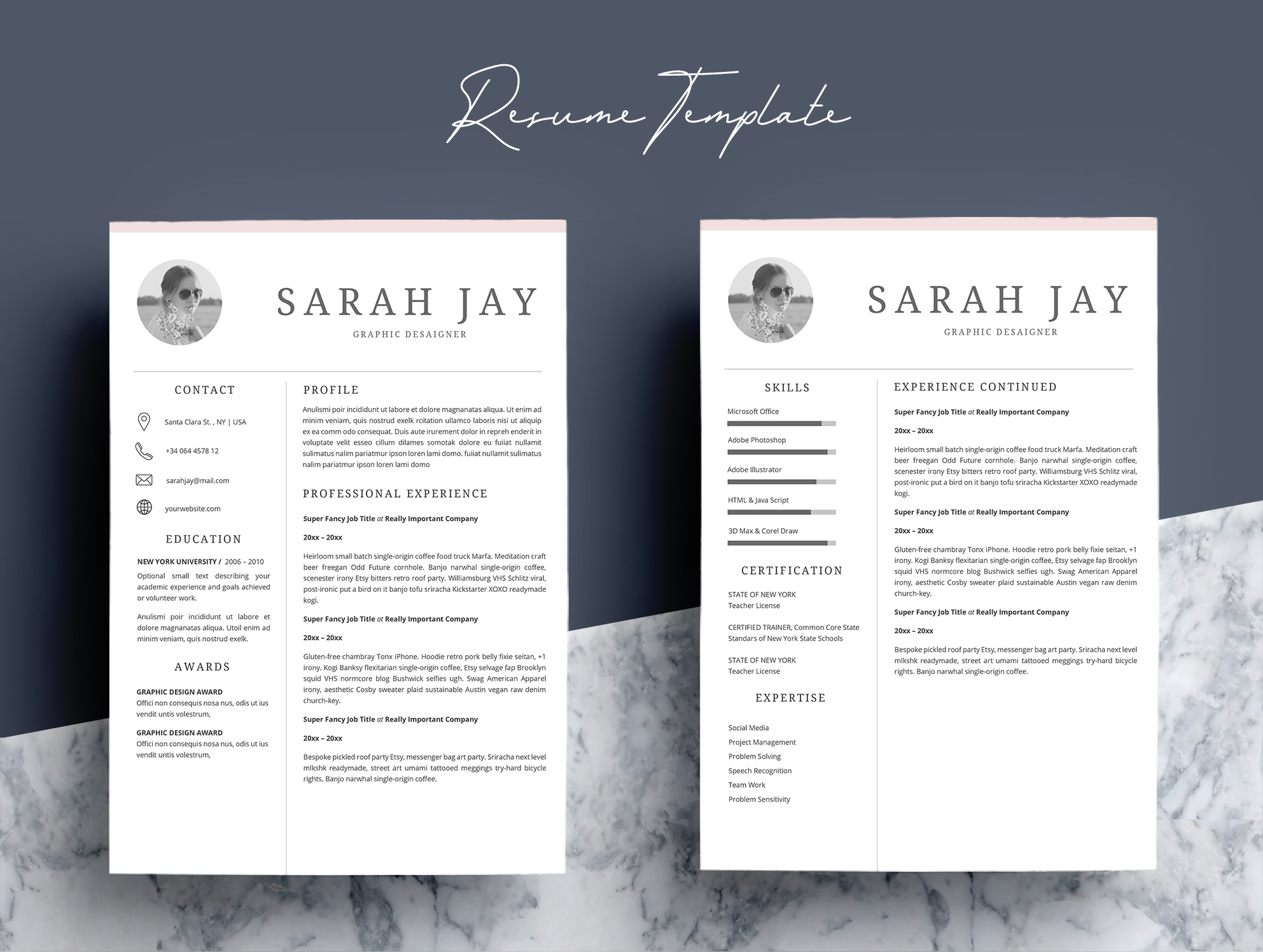 Professional Resume Template Desaign example image 4