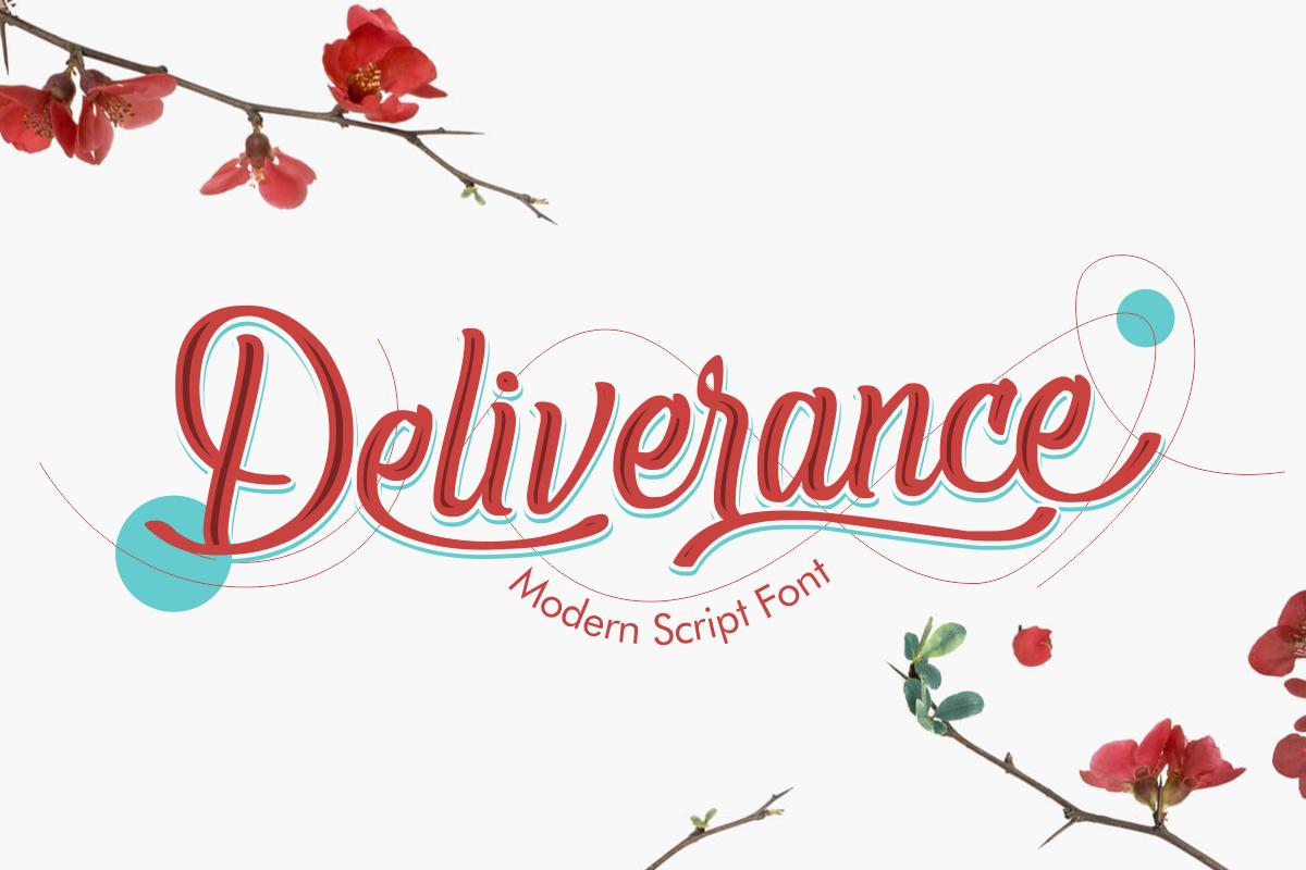 Deliverance | Modern Script Font example image 1