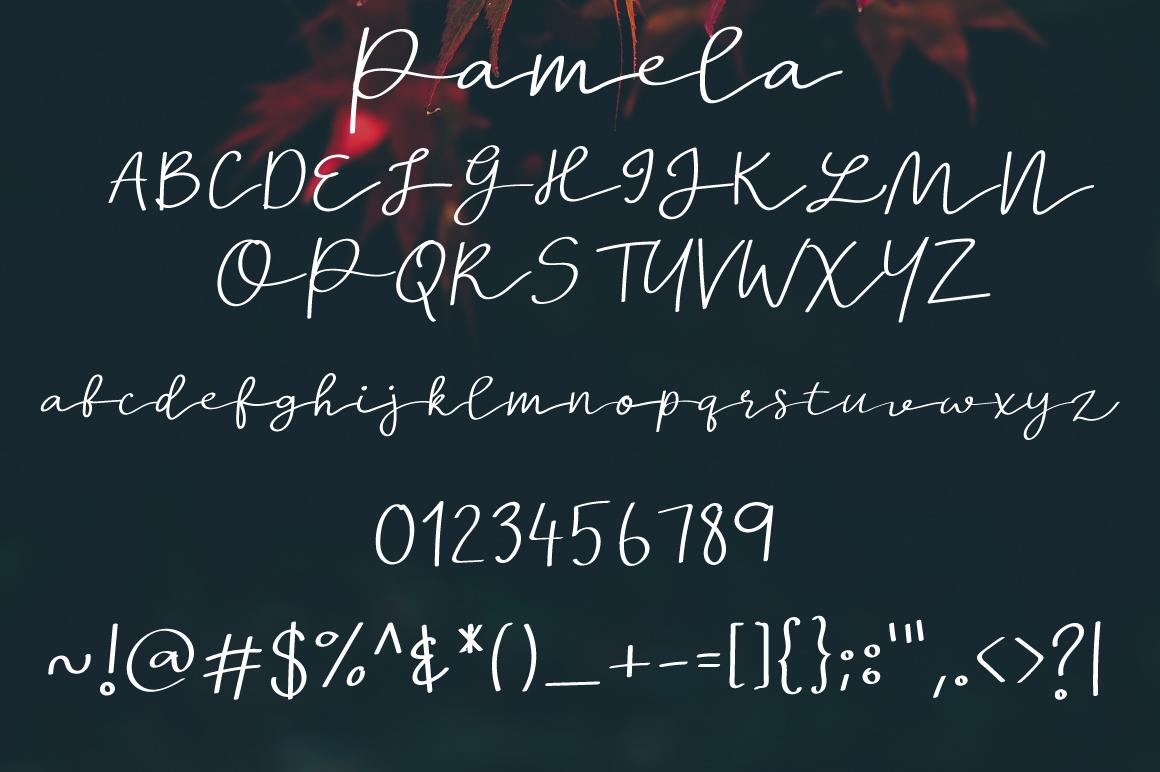 Pamela example image 3