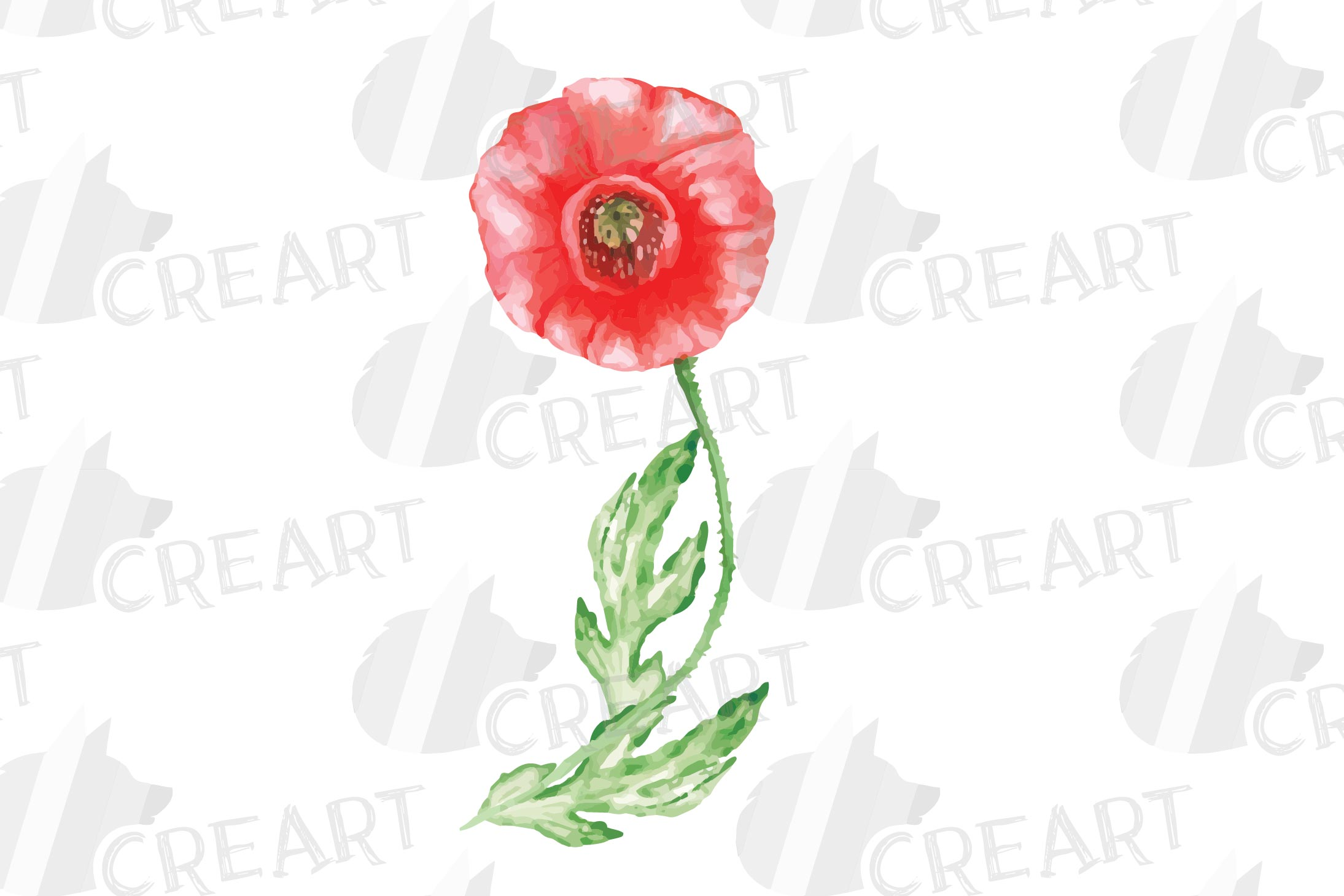 Watercolor red poppy flower and leaf decor clip art. Poppies example image 4