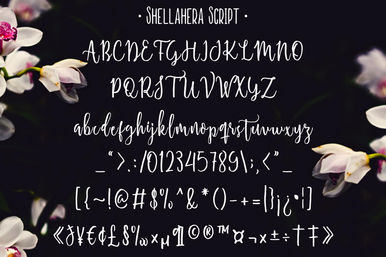 Shellahera Font Bundle example image 4