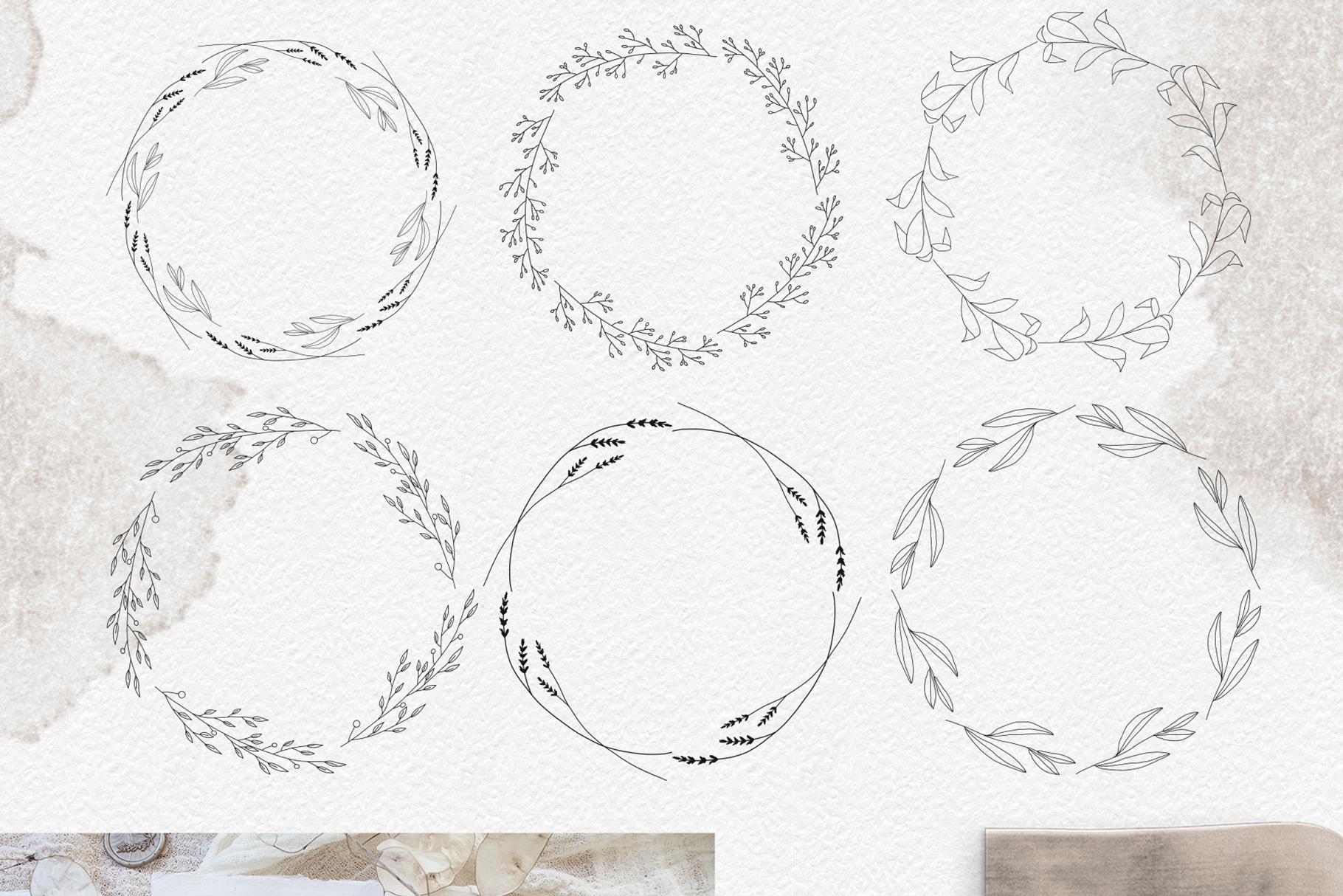 Line art botanical illustrations example image 4