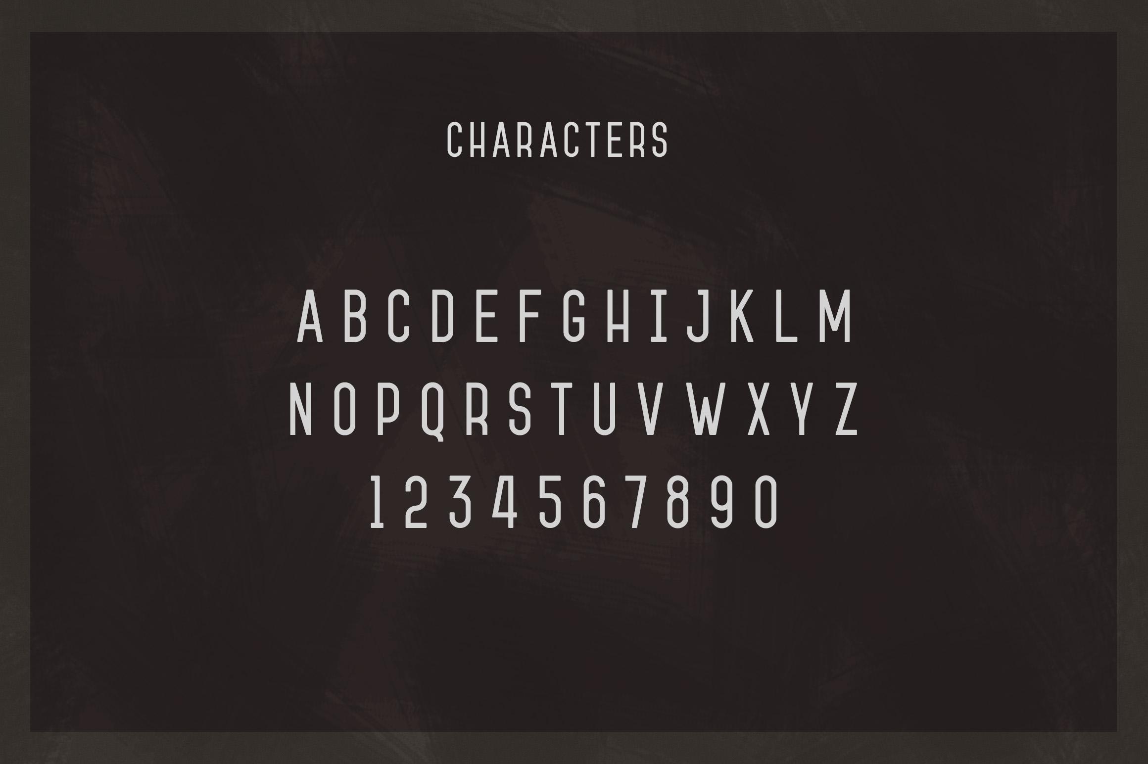 Jameson Sans-Serif example image 3