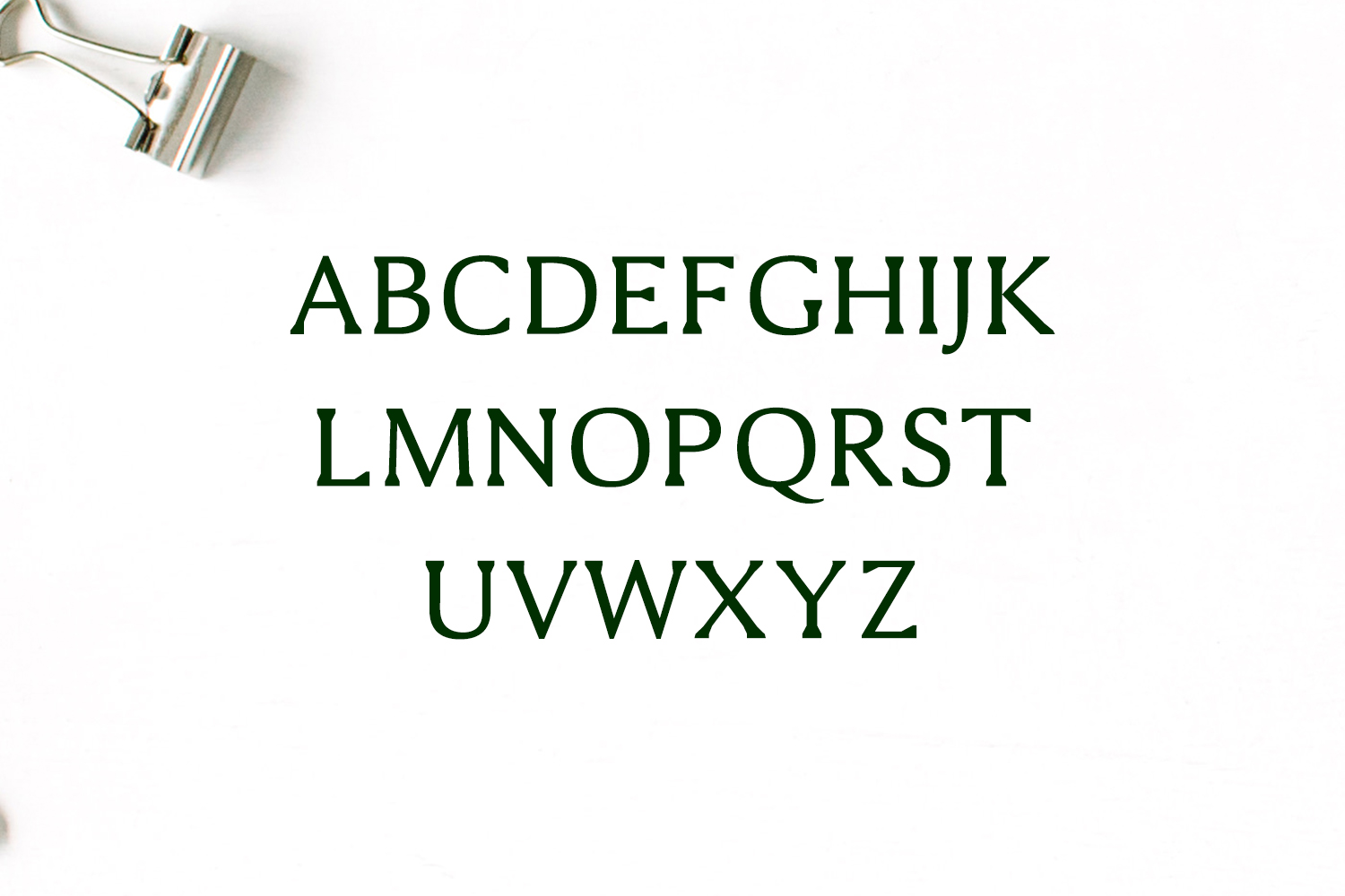 Shaaron A New Serif Font Family example image 2