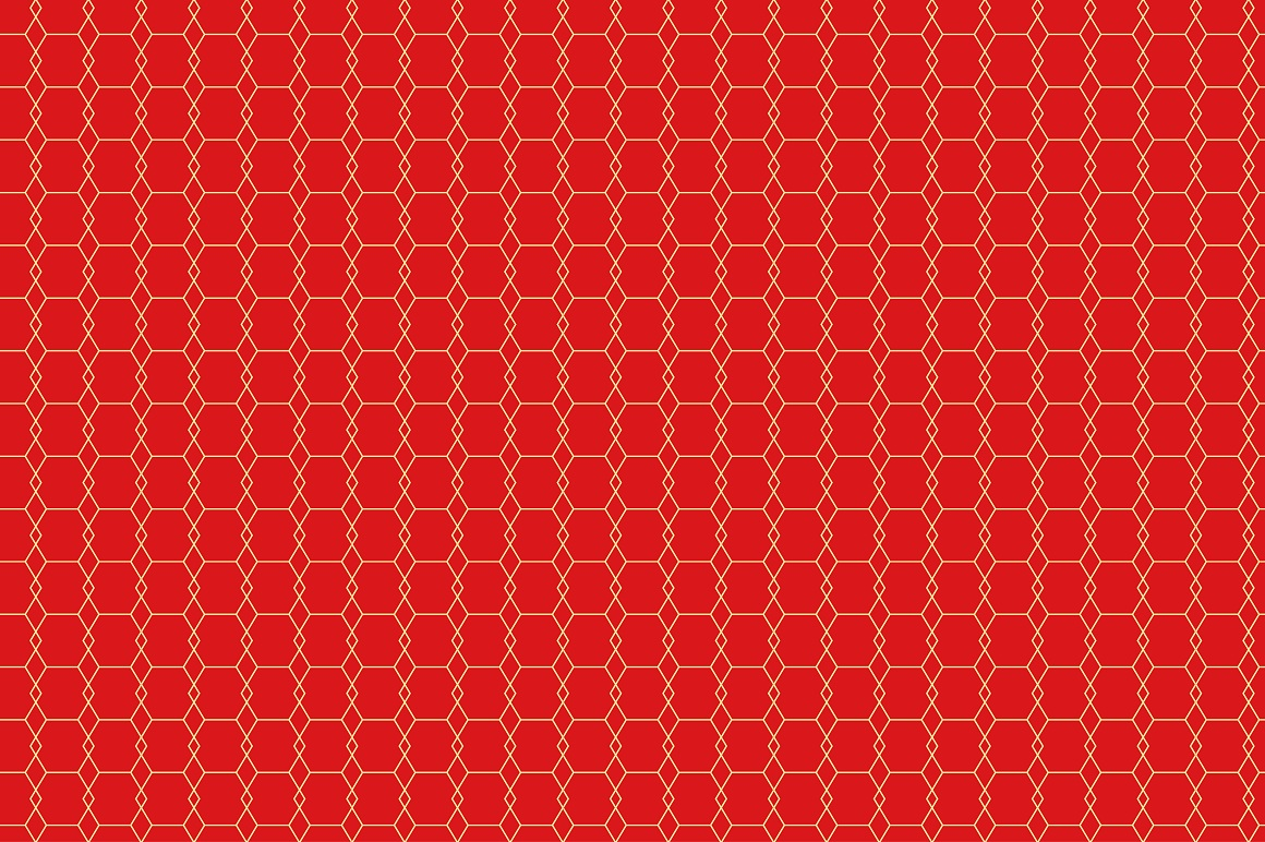 Rich Ornamental Patterns. Seamless. example image 6