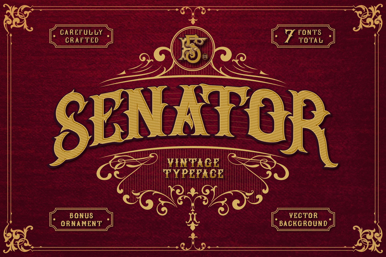 SENATOR example image 1