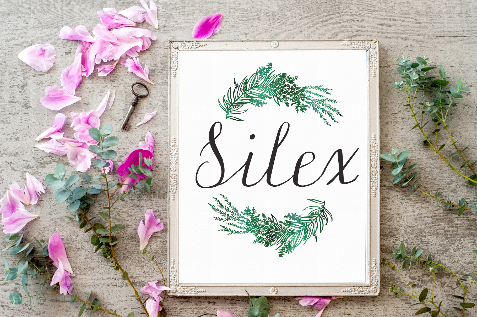 Silex. Modern calligraphy example image 6