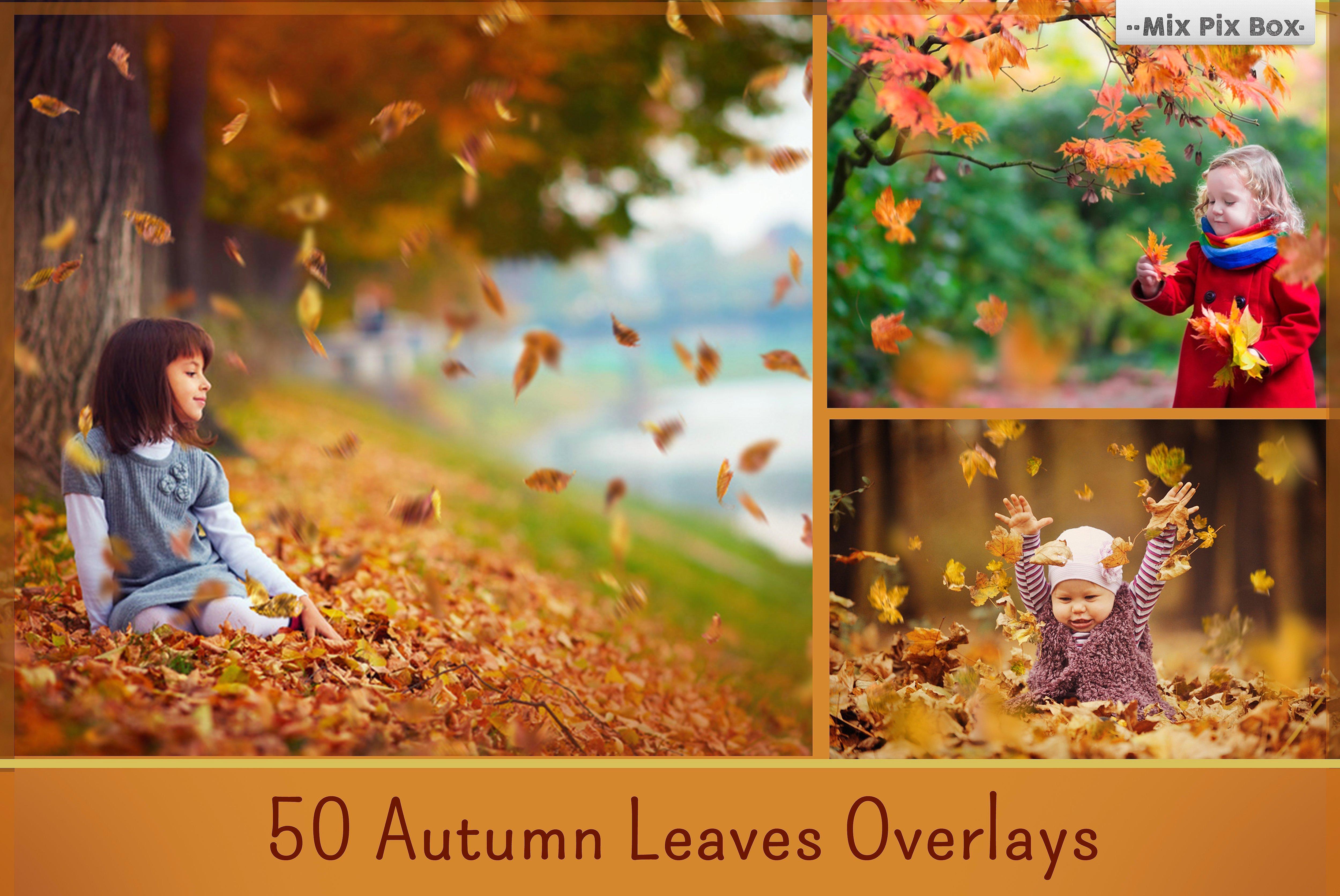 900 Photo Overlays Bundle example image 13