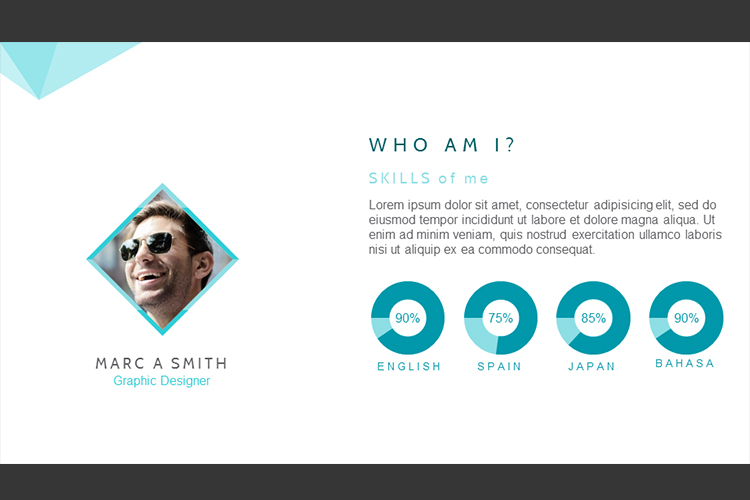 Resume Presentation Templates example image 9